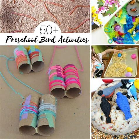 kindergarten activities birds 50 ideas for a preschool bird unit study sugar spice