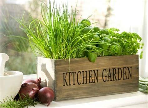 indoor herbal garden grow herbs indoors bob vila s blogs