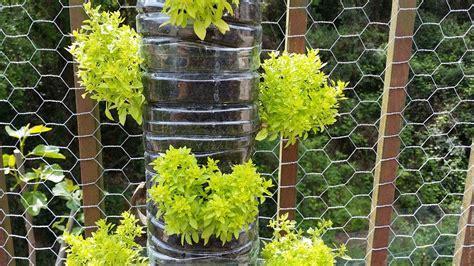 come realizzare un giardino verticale come realizzare un giardino verticale con materiali da
