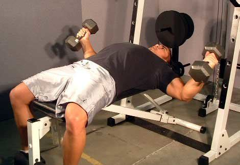 300 lb bench press how to bench press 300 pounds in 12 weeks