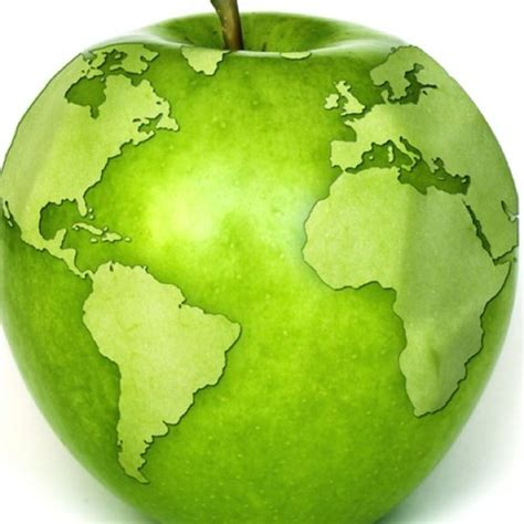 alimentos ecologicos atterravitae twitter