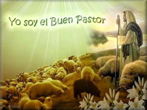 imagenes religiosas de jesus el buen pastor 174 blog cat 243 lico gotitas espirituales 174 im 193 genes de jes 218 s
