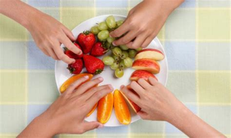 fruit 4 childcare food pyramid kidspot