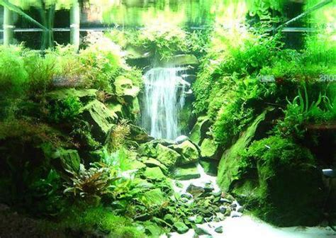how to make an aquascape creating a waterfall in a planted aquarium first news
