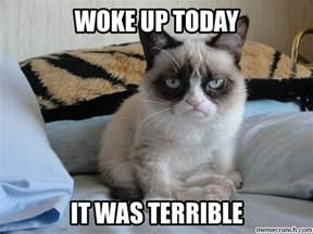 Grumpy Meme - grumpy cat on mondays