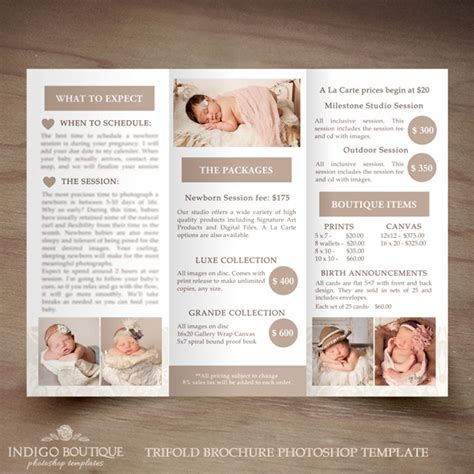 newborn photography trifold brochure template client