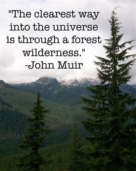 muir quotes muir quote inspirational quotes