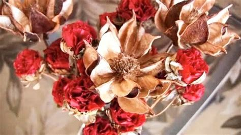 fiori essiccati decorazioni fiori secchi fiori secchi fiori secchi per