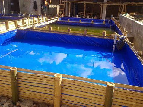 Jual Kolam Terpal Gurame jual terpal untuk kolam ikan of java