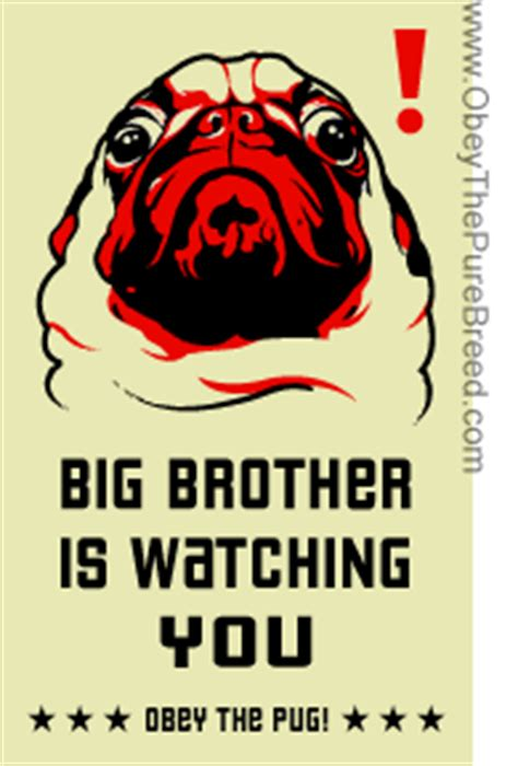 obey the pug pug big obey the breed coupons