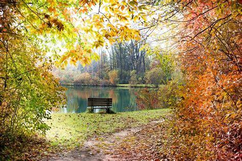 fall autumn free photo autumn fall season free image on pixabay