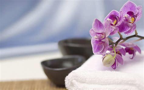 Orchidee Gelbe Blätter 5399 by Die 48 Besten Orchideen Hintergrundbilder