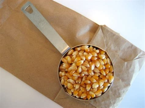 How To Make Popcorn In A Brown Paper Bag - how to microwave popcorn in a brown paper bag and make it