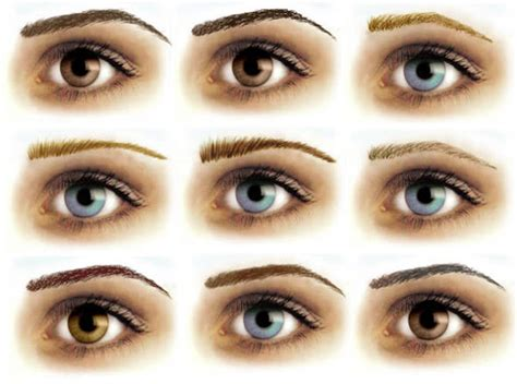 temporary eyebrow tattoo removable eyebrows sle pack tattooforaweek