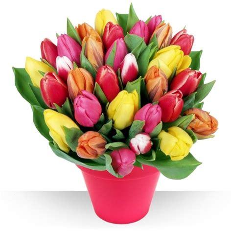 regalare un fiore confezionare fiori regalare fiori come confezionare i