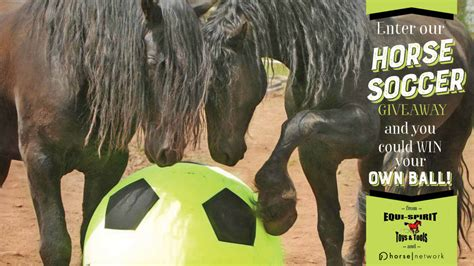 Soccer Giveaways - enter our horse soccer giveaway and you could win your own ball