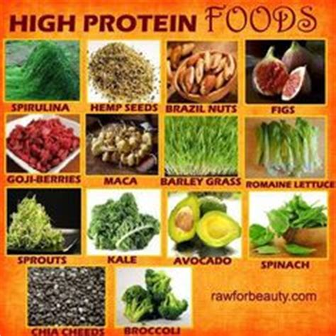 power vegan meals high protein plant based recipes for a stronger healthier you books 1000 images about high protein low carb on