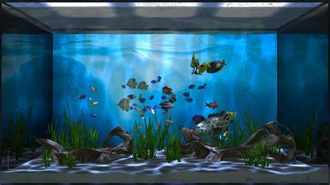 Tv Aqua 24 media aqua tv