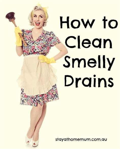 best 25 smelly drain ideas on clean sink
