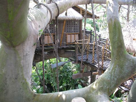 Treehouse At Disney - image swiss family robinson treehouse disney world download