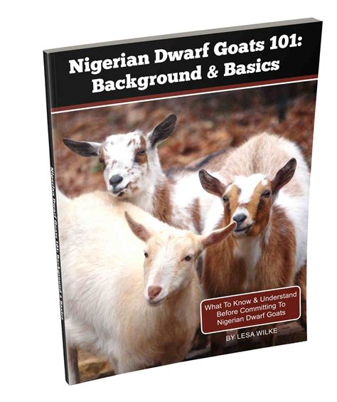 can i have goats in my backyard 100 can i have goats in my backyard goat song a seasonal life a short history