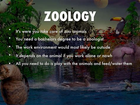 Requirements To Be A Zoologist by What Does It Take To Become A Zoologist Paperwingrvice Web Fc2