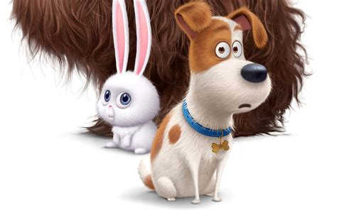 secret life  pets   dog hare cute