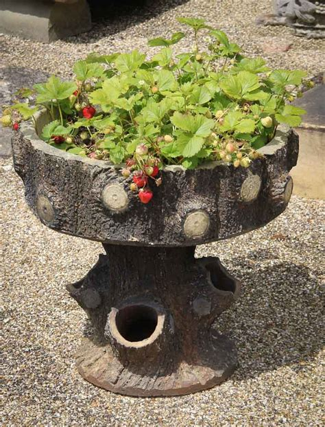 Strawberry Planters Uk by Strawberry Planter