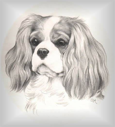 coloring pages of cavalier king charles spaniels free coloring pages of cavalier king charles