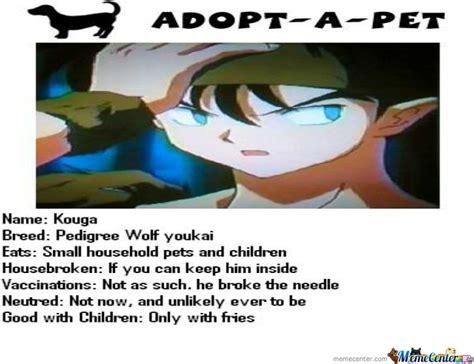 adoptapet dogs adopt a pet by amer00la meme center