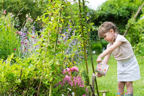 Garden In A Can Summer Is Coming How To Keep Your Garden Plants Looking