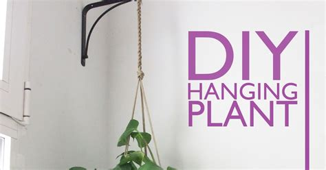 Diy Hanging Plant Holder - i came to diy hanging plant holder