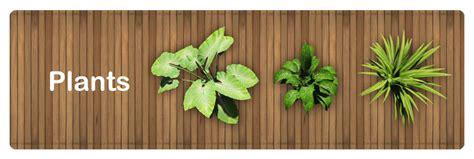 top 28 best plant nursery reviews mint plant product reviews and price comparison fotos de