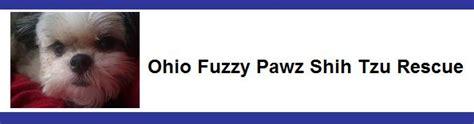 ohio fuzzy pawz shih tzu rescue 2012 vendors