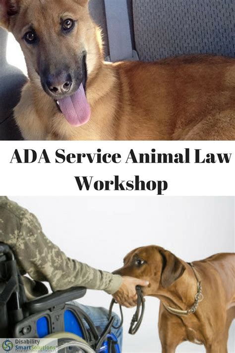 ada service laws ada compliance disability smart solutions