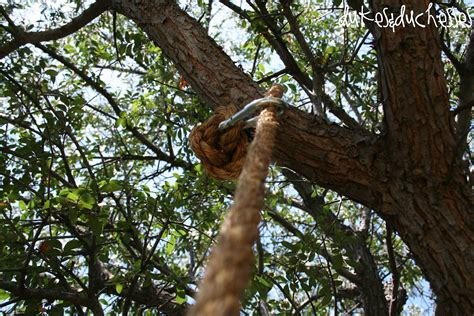 how to attach a swing to a tree branch how to make a rope swing dukes and duchesses