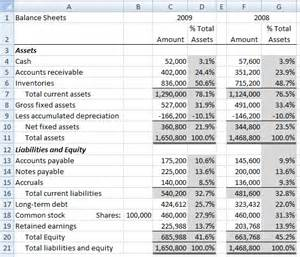 ba 435 financial statement project