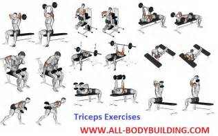 how to get bigger triceps all bodybuilding
