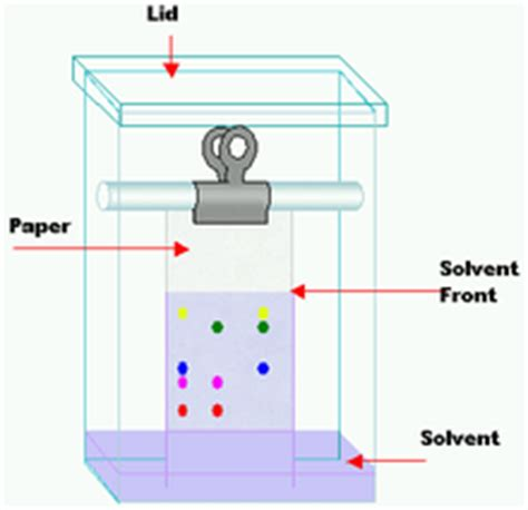 chromatography research paper paper chromatography