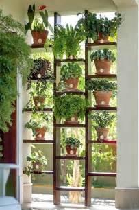 mur v 233 g 233 tal et autre jardin vertical ext 233 rieur et int 233 rieur
