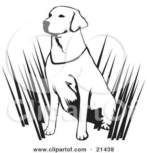 coloring pages of hunting dogs hunting dogs colouring pages