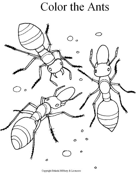 Ant Coloring Pages Preschool Booklet Kids Free Coloring Coloring Pages Booklet