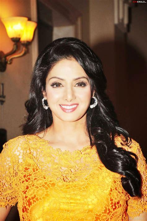 sridevi biography in hindi bollywood actress sridevi hot hd photos gallery glamsham