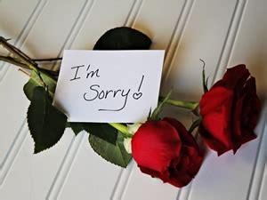 fiori per farsi perdonare consegna fiori a domicilio fiori per chiedere scusa con