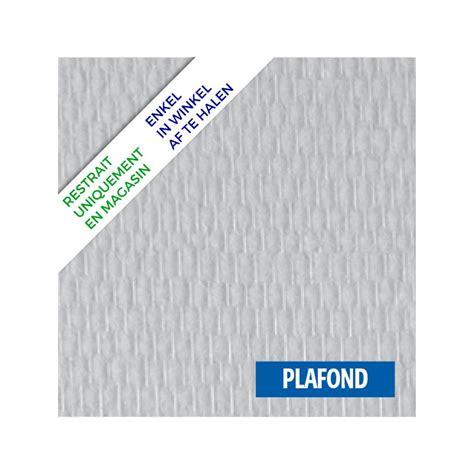 Fibre De Verre Pour Plafond fibre de verre toile plafond