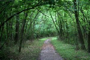 Hiking Trails Best Hiking Trails In Nj Funnewjersey