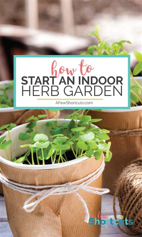 how to start an indoor herb garden kitchen confidante 174 how to start an indoor herb garden a few shortcuts
