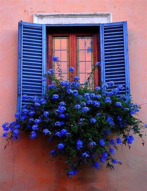 fioriere per davanzale finestra lovika m o o d fever vinduer