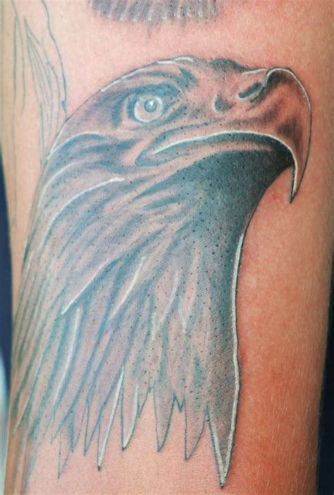 eagle tattoo designs free eagle tattoos