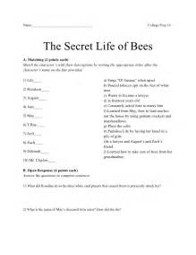 Secret Of Bees Essay by The Secret Of Bees Essay Prompts Mfacourses887 Web
